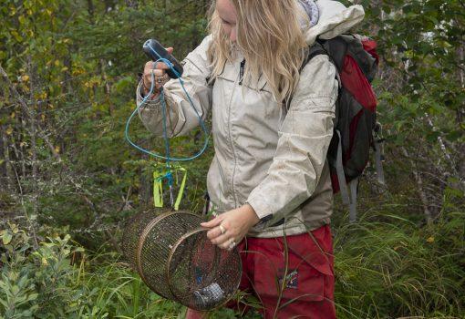 Emily field work